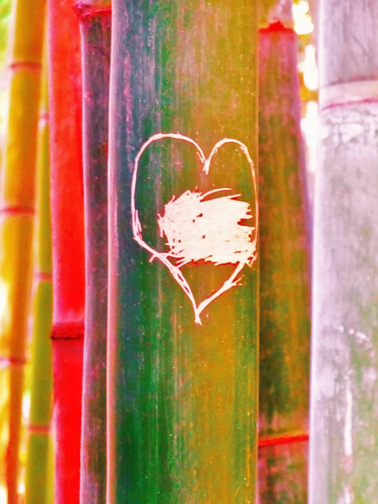 Amour du végétal