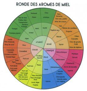 Miel: la roue des Arômes