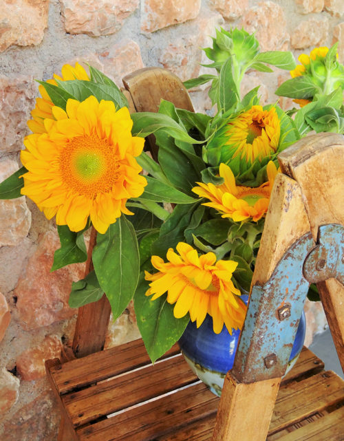 Nature morte aux tournesols
