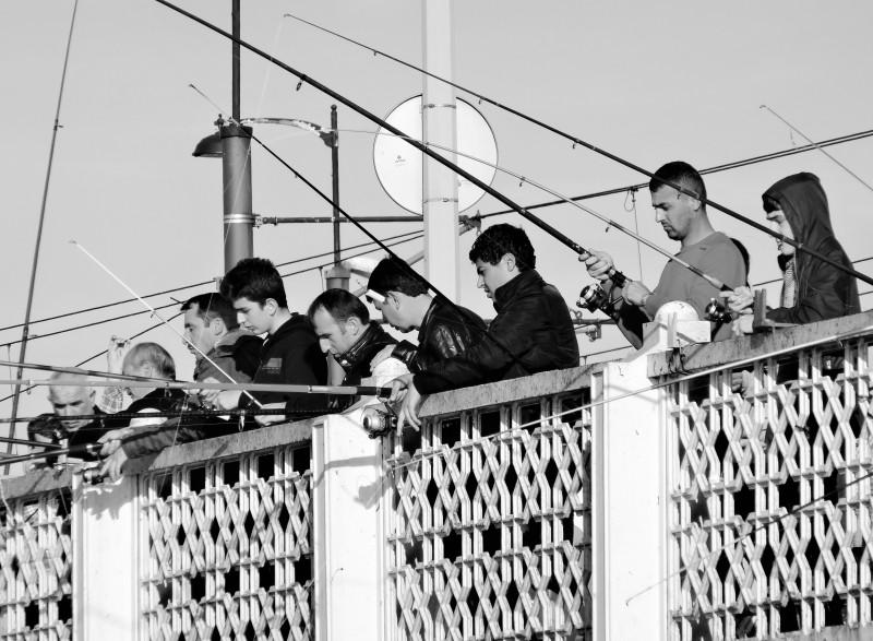 Cannes à pêche