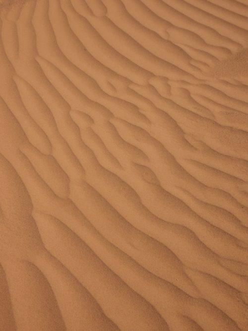 Sable brun