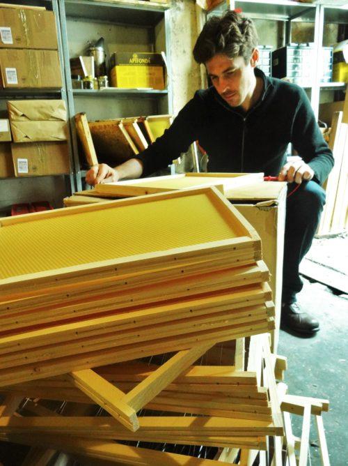 Les quatre saisons de l'apiculture